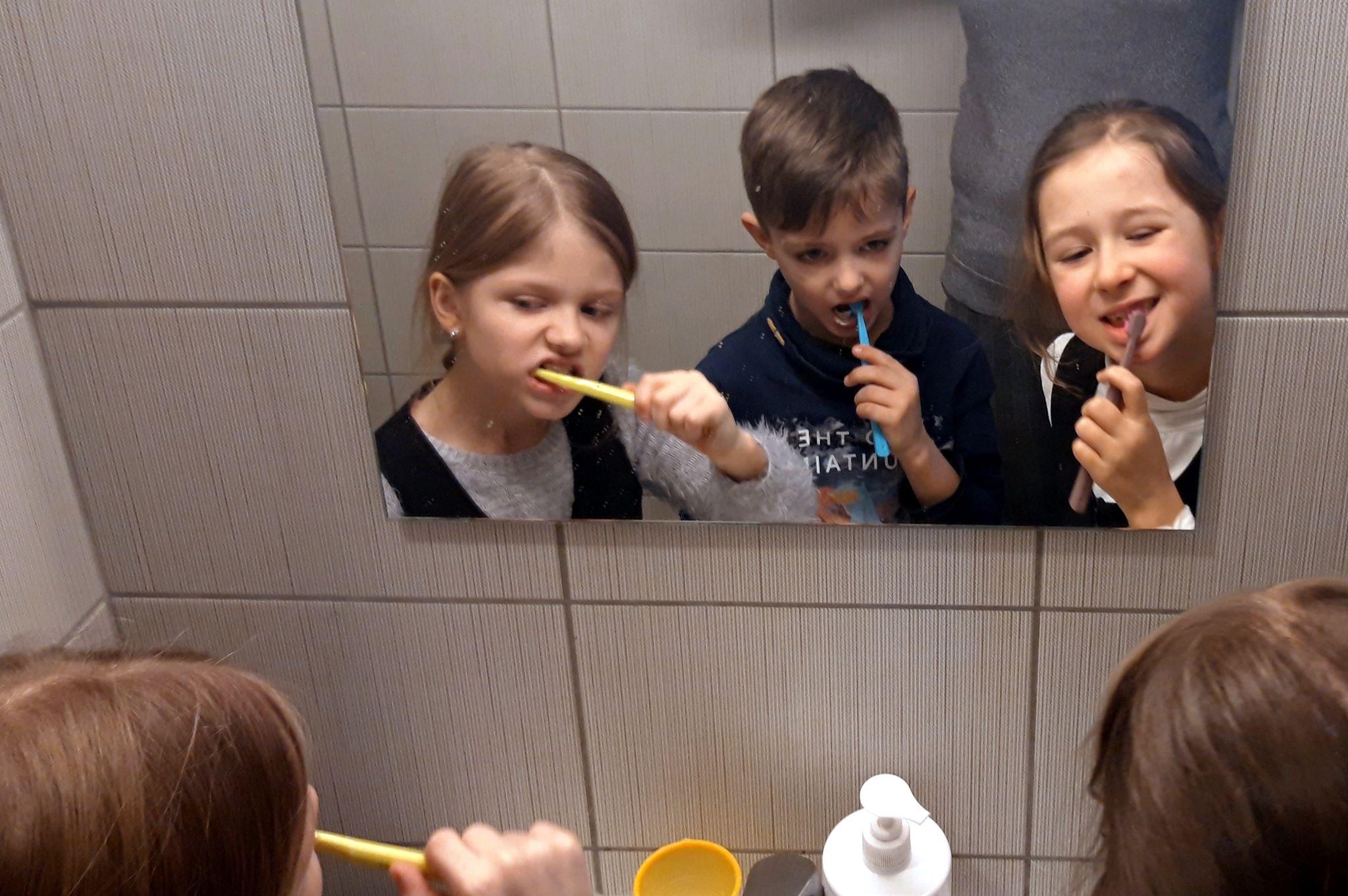 Dantukų priežiūros pamoka